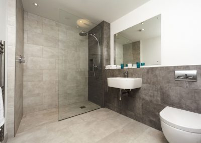 Grey-bathroom-shower-design-glass